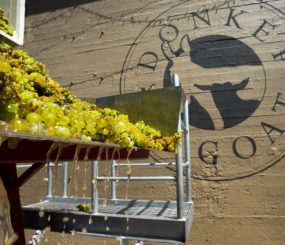 02-urban-wineries-in-berkeley-california